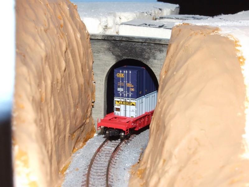 The Happy Loop Railroad - Page 5 Dscf4317