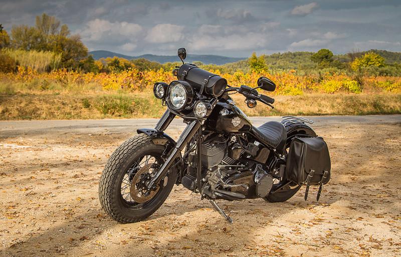 Black Slim S de Gozp - Page 7 Harley15