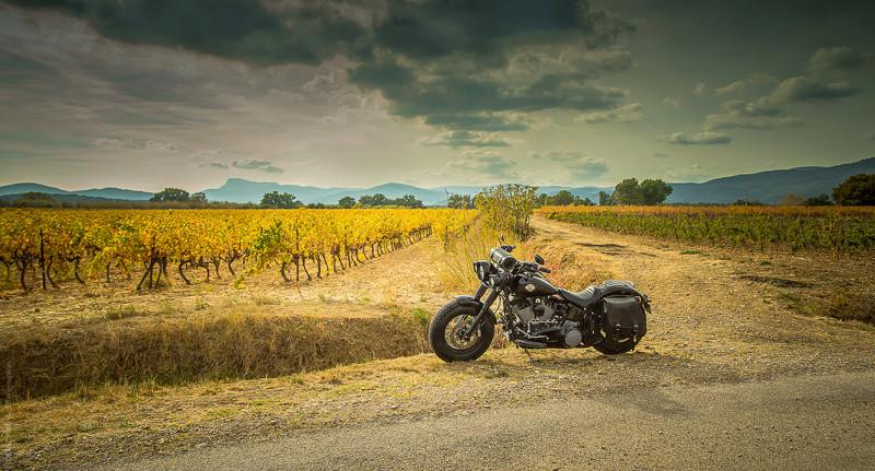 Black Slim S de Gozp - Page 7 Harley18