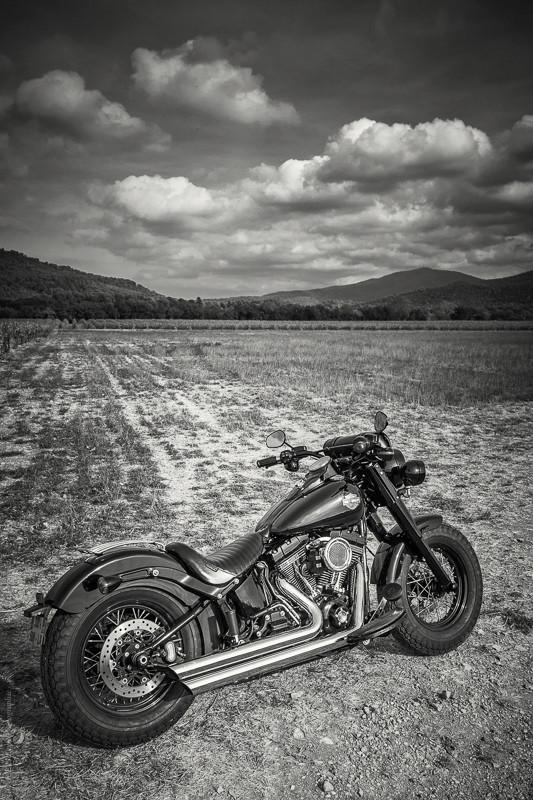 Black Slim S de Gozp - Page 7 Harley19