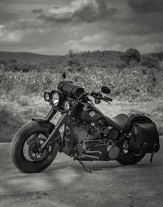 Black Slim S de Gozp - Page 7 Harley20
