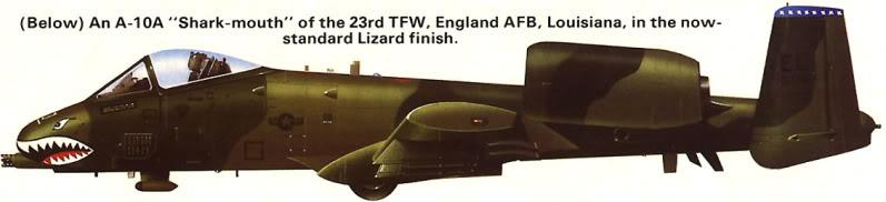 A-10a Thunderbolt II 47th fighter Sqd   Italeri 1-48 3_110