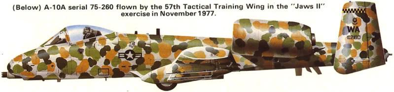 A-10a Thunderbolt II 47th fighter Sqd   Italeri 1-48 3_2310