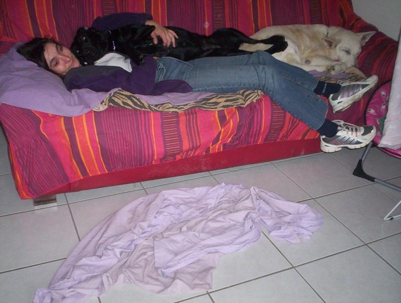 Flicka adoptée en mai 2010 Le_bon10