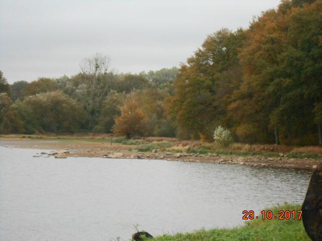 couleur d'automne  Dscn4212