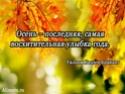 ОСЕННИЕ СТИХИ 1d813510