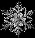 _СНЕЖИНКИ Snowfl12