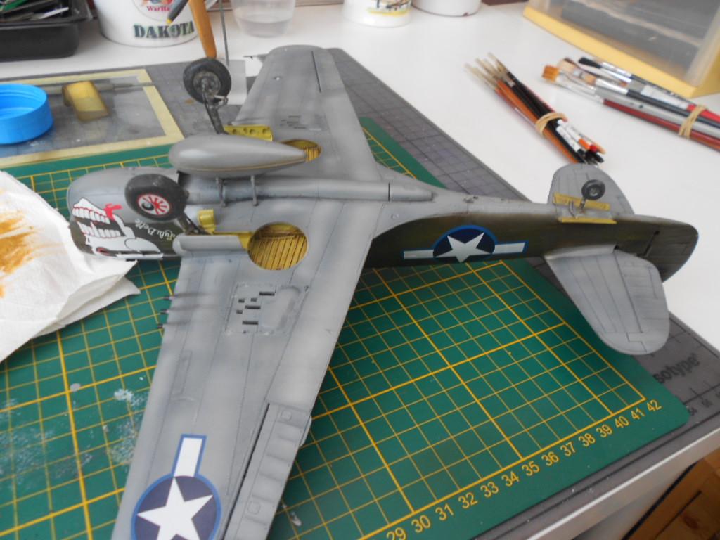 p 40 n warhawk 1/32 edouard   P40_fi33