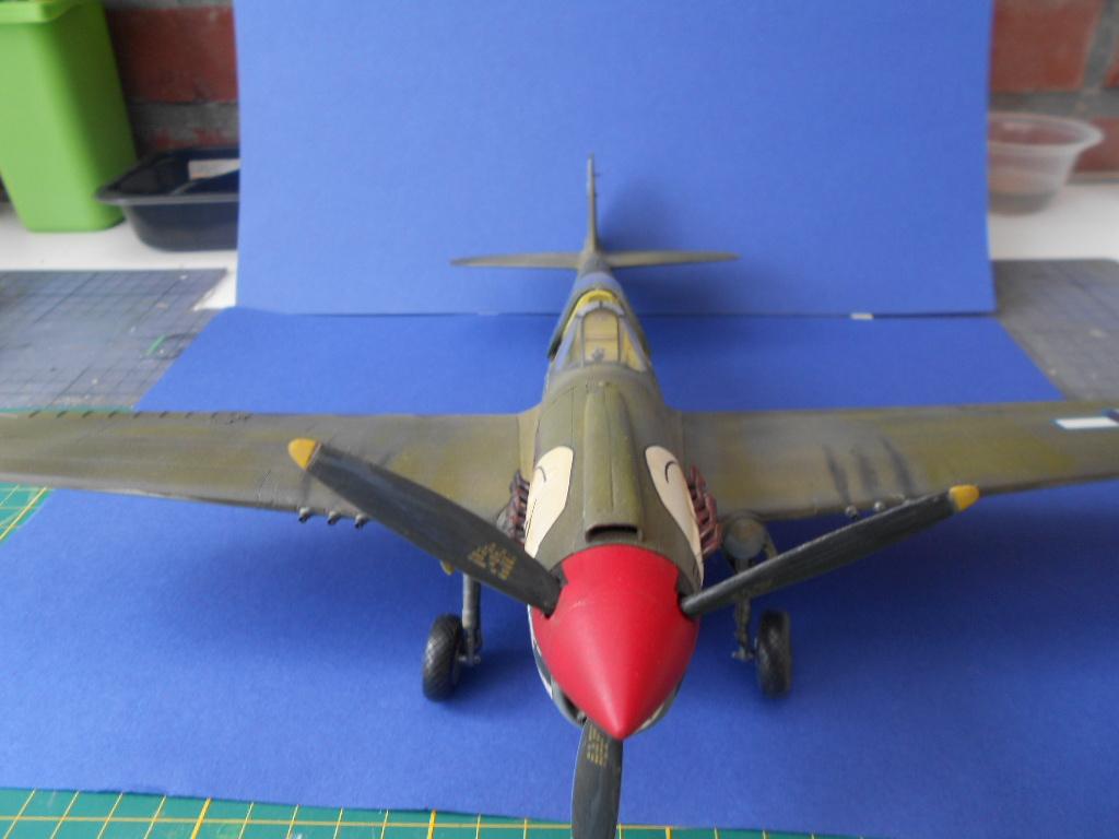 P-40 N Warhawk 1/32 Edouard   - Page 2 P40_fi59