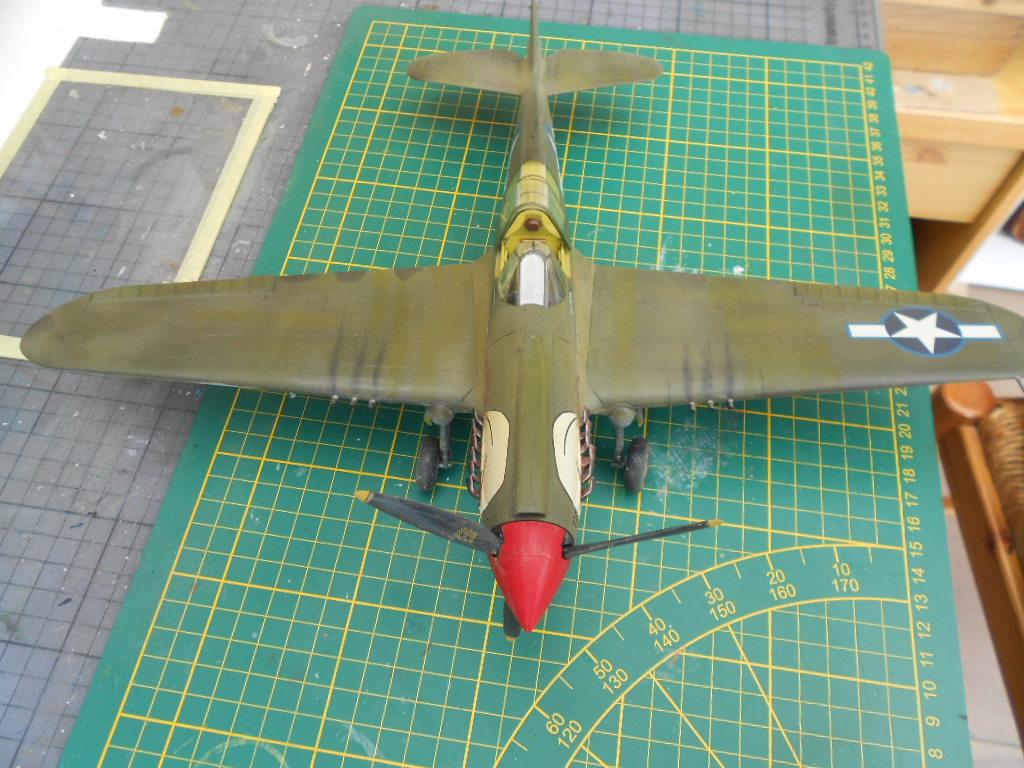 p 40 n warhawk 1/32 edouard   P40_fi80