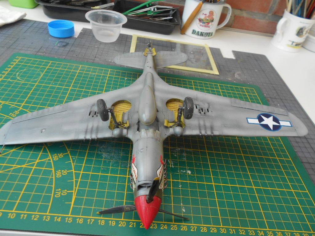 p 40 n warhawk 1/32 edouard   P40_fi81