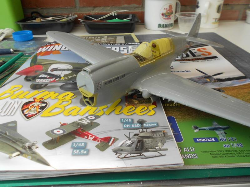 P-40 N Warhawk 1/32 Edouard   - Page 2 P40_tr24