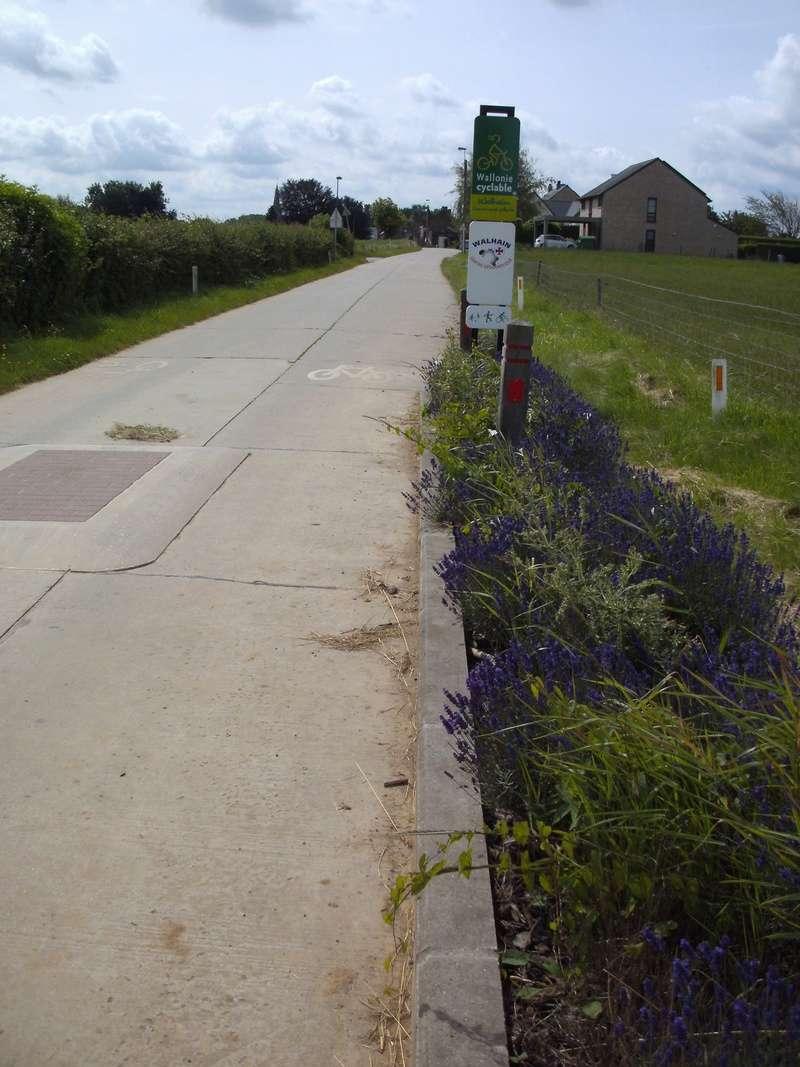 03 Itinéraire N°0 W0 Véloroute des capitales - Partie Wavre - Daussoulx (RV10 -EV5) 21a_wa10