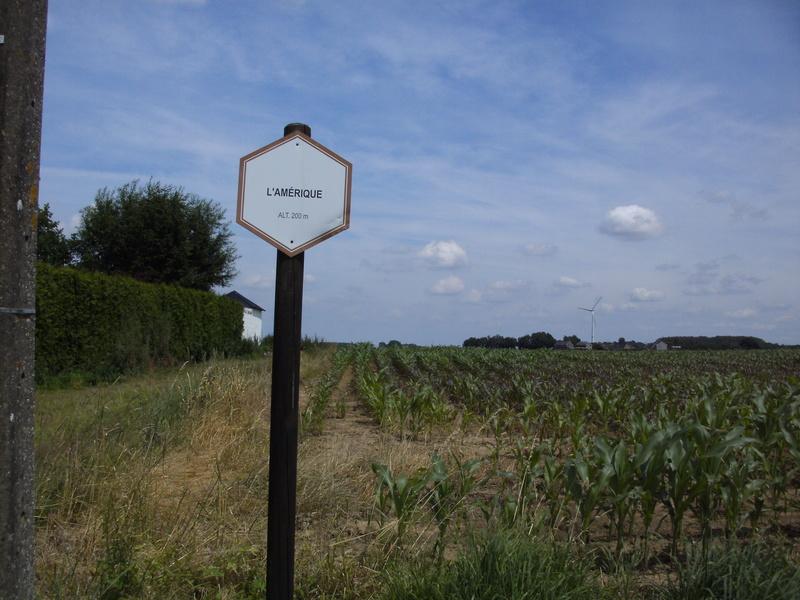 03 Itinéraire N°0 W0 Véloroute des capitales - Partie Wavre - Daussoulx (RV10 -EV5) 28_dau10