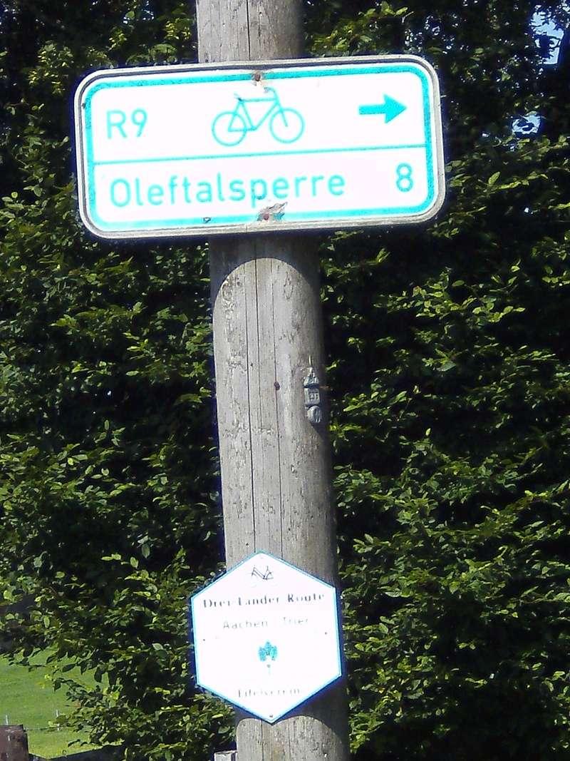 ALLEMAGNE  réseau de vois vertes - les chemins du rail Hellen10