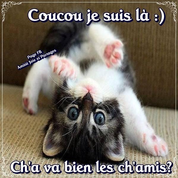 Bonjour / bonsoir avril - Page 3 Coucou11