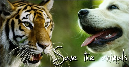 Save-the-animals Save_t10