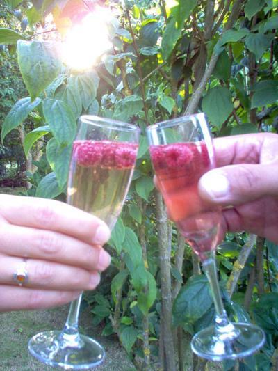Devinez les composants d'un cocktail - Page 6 Cockta10