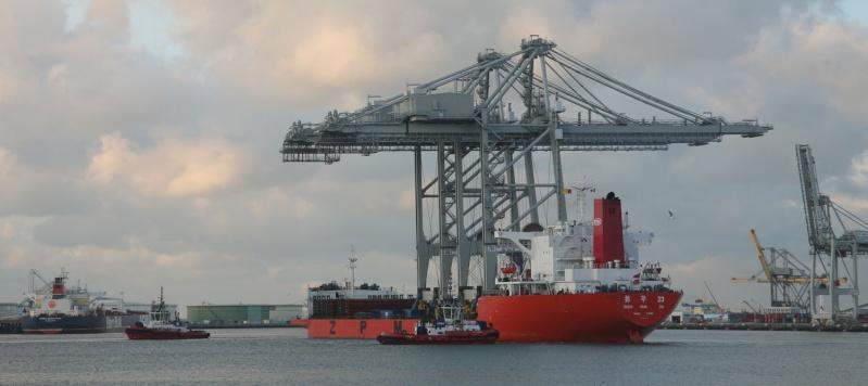 Deux nouveaux portiques au port du Havre Img_8413