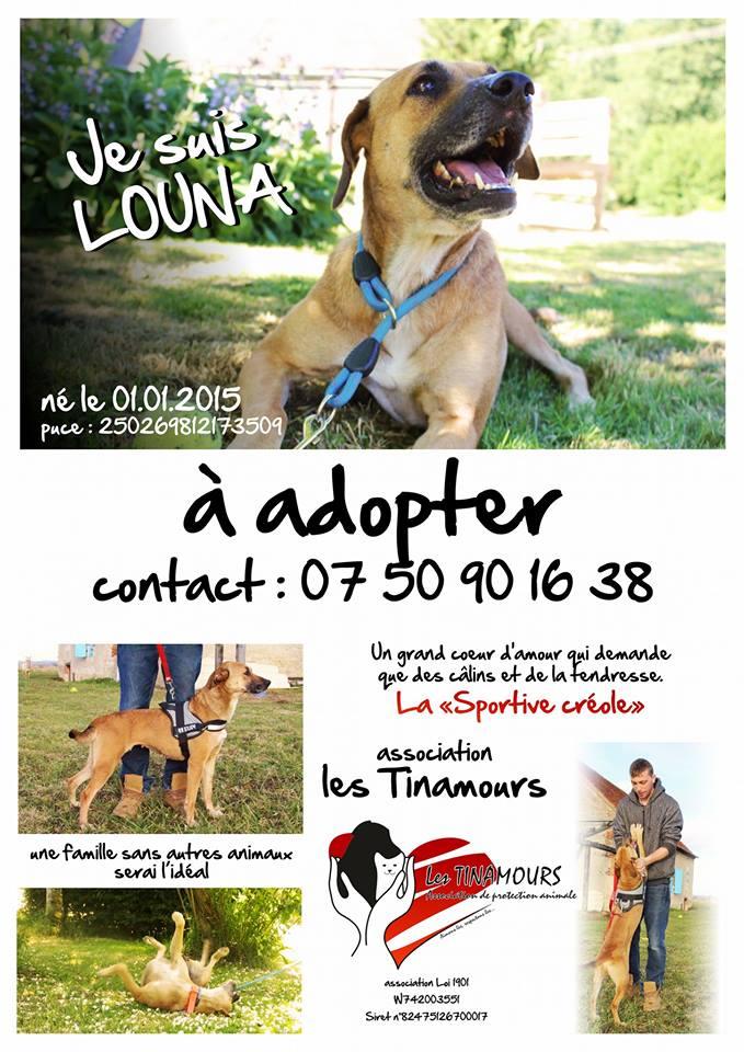 Louna adoptée :) 28280110