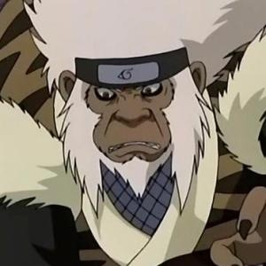 Naruto : la présentation des personnages - Page 5 Enma10
