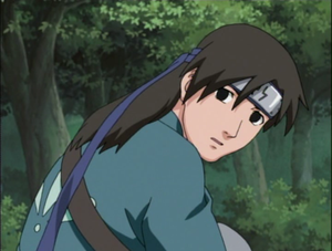 Naruto : la présentation des personnages - Page 4 Shibuk10