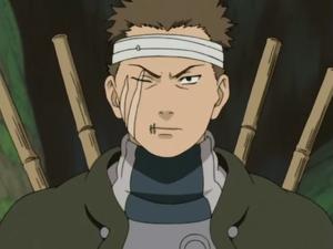 Naruto : la présentation des personnages - Page 4 Shigur10
