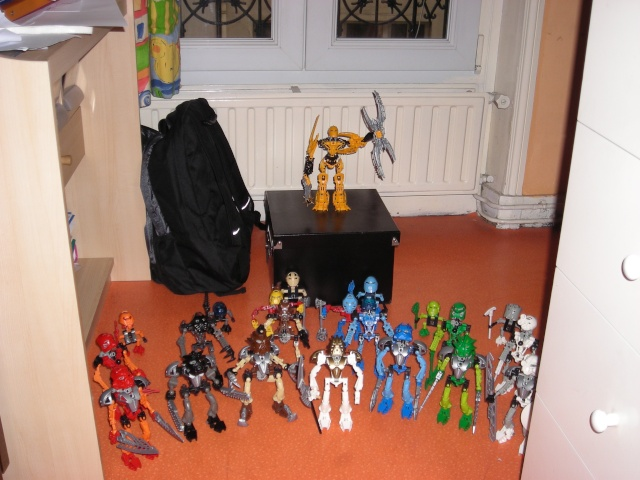 [Produits] Votre collection Bionicle - Page 4 Dscn2510