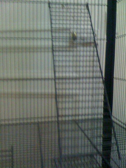 vente cage sur Paris Cage210
