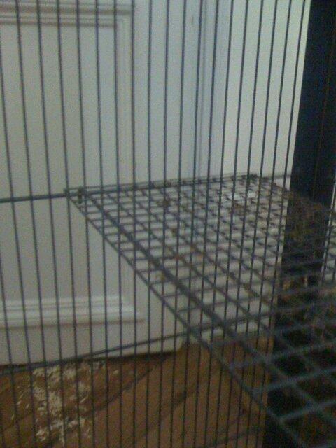 vente cage sur Paris Cage410