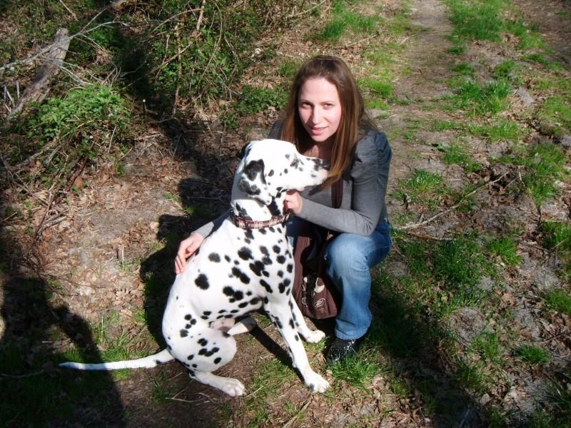 Une belle histoire, Câlin, dalmatien de 2 ans... - Page 2 Annive15