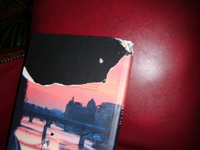 Une belle histoire, Câlin, dalmatien de 2 ans... - Page 2 Dscf0043