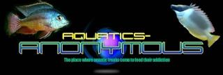 Aquatics Anonymous