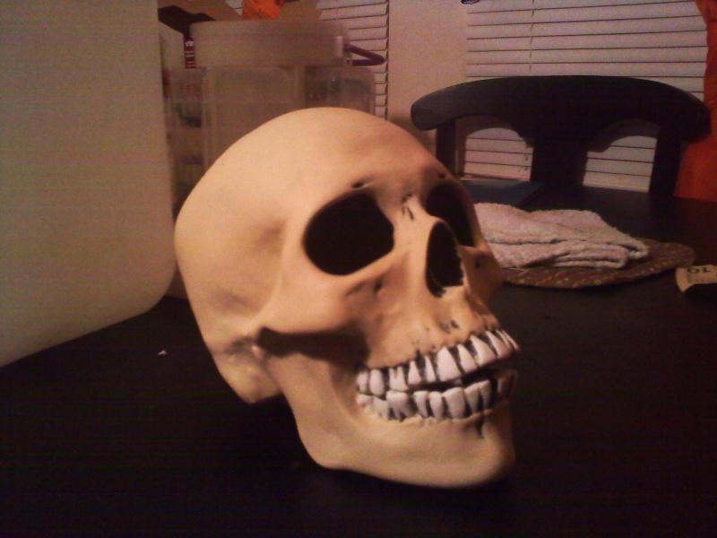 ceramic human skull Cerami11