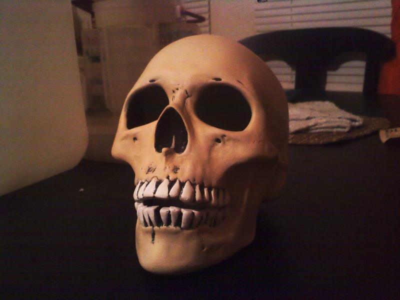 ceramic human skull Cerami12