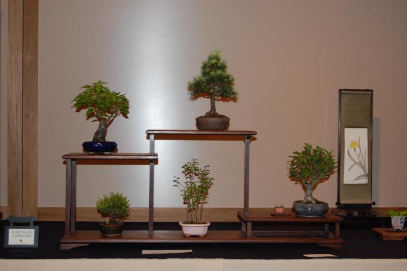 Bonsai Society of Portland Spring Show Spring32