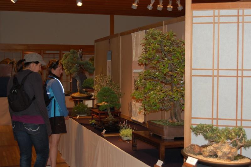 Bonsai Society of Portland Spring Show Spring36