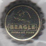Argentine Beagle10
