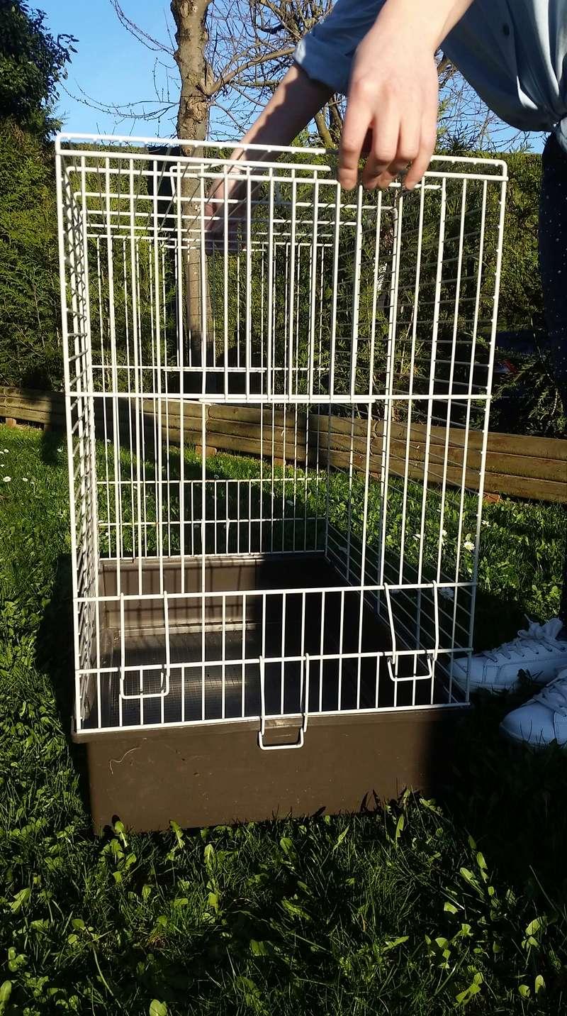 [Vente] reste 1 cage 20170320