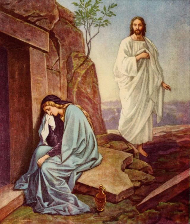 A TOUS LES CATHOLIQUES FIDÈLES - Page 2 Rysurr11