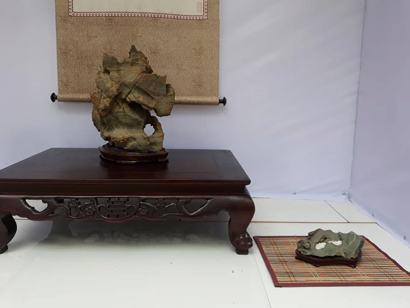 Suiseki viewing stone exhibition in Viet Nam Hhxcc410