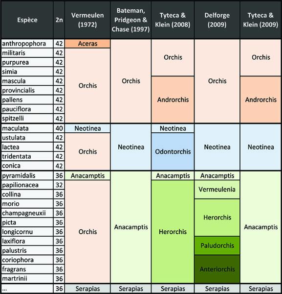 Récapitulatif sur les genres Orchis, Anacamptis, etc... Tablea10