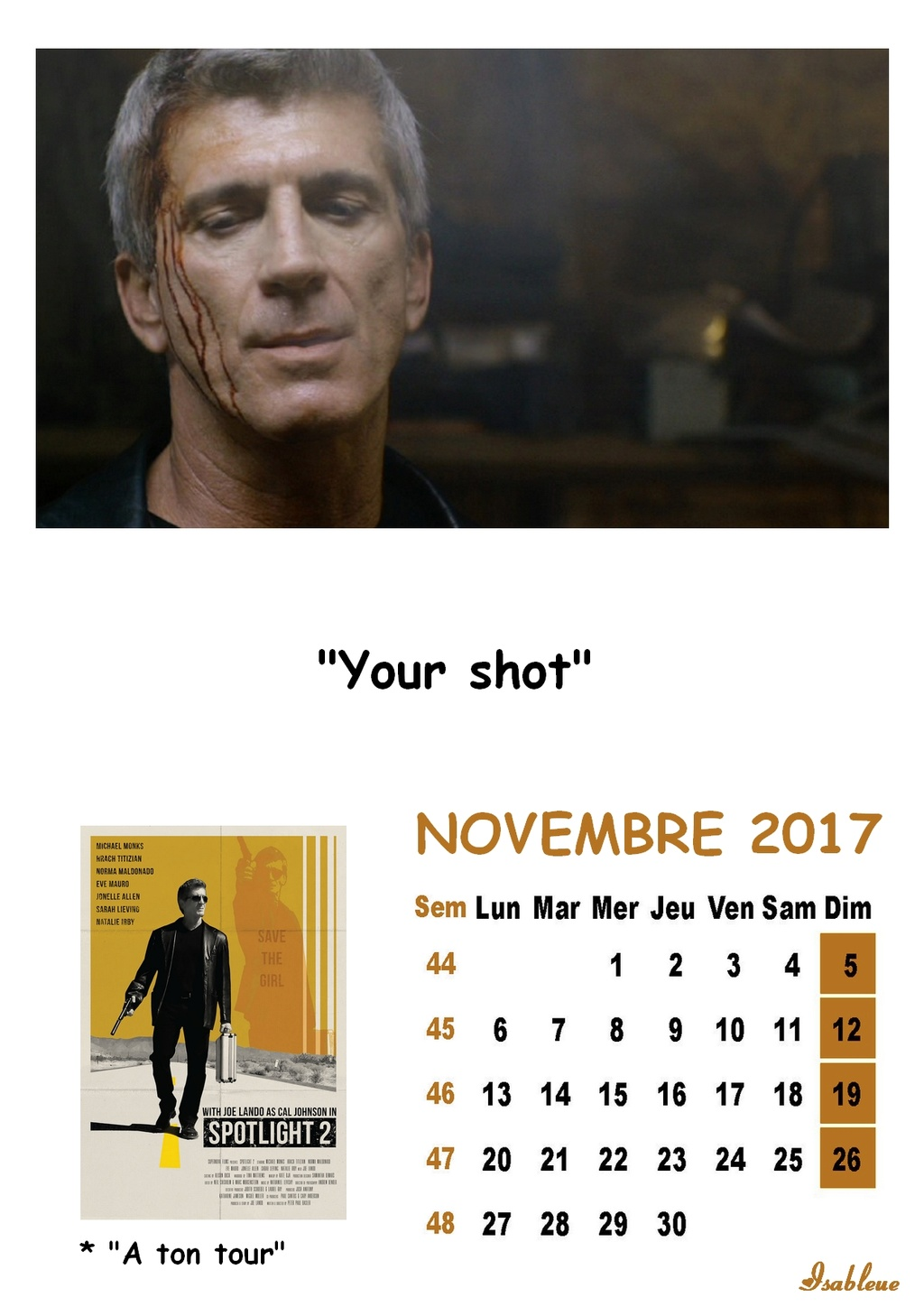 Calendriers 2017 - Page 2 11_20110
