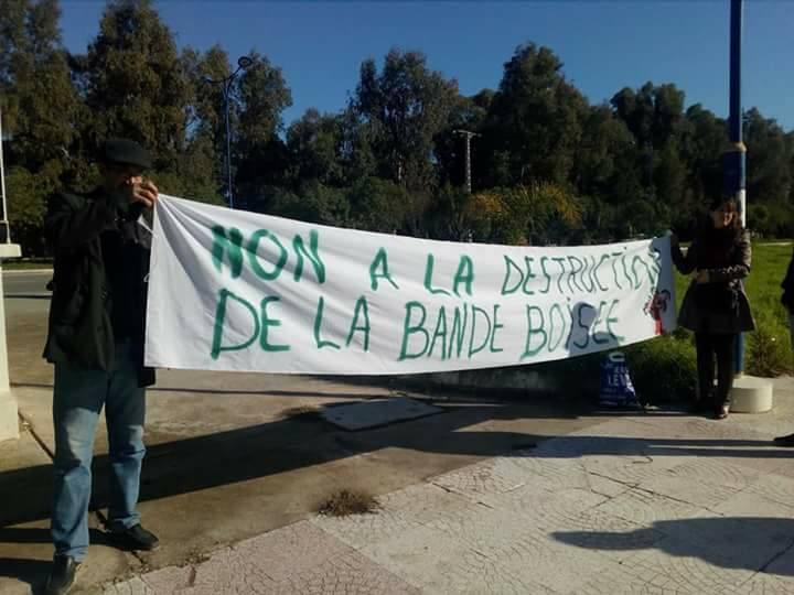 Aokas: Rassemblement devant le siège de l'APC pour dire NON à la destruction de la bande boisée 06 décembre 2017 1477