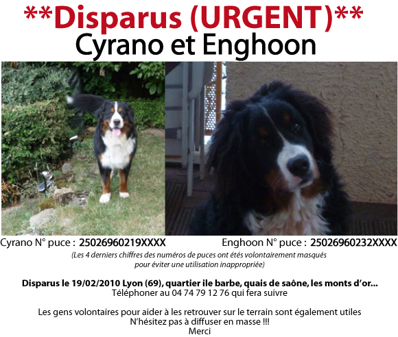 [retrouvée Enghoon]Disparition de 2 B. Bernois à Lyon - Page 2 Image011