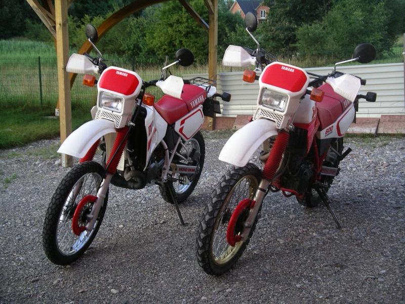 Mes autres motos Imgp5110