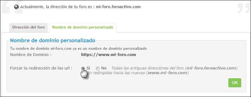 Nombre de dominio personalizado Captur10