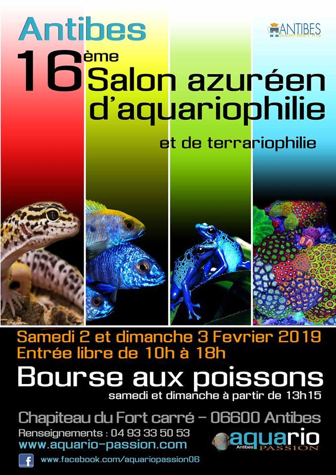 16éme salon azuréen de l'aquariophilie d'Antibes (06) 16_yme10