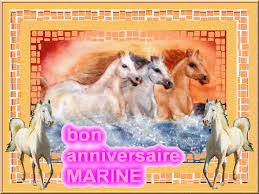 JOYEUX ANNIVERSAIRE MARINE Marina10