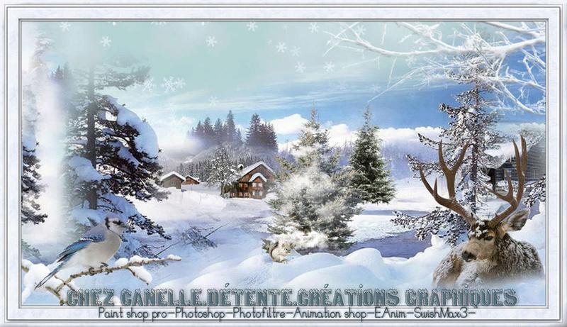 Chez Canelle Sans_t15